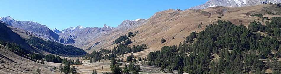 Affacturage Alpes-de-Haute-Provence